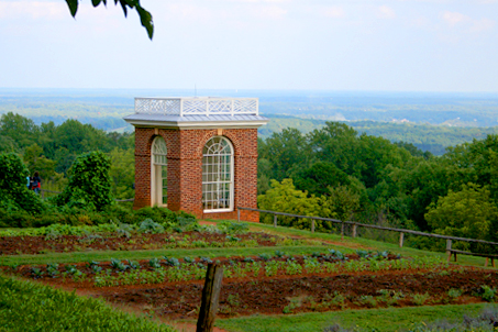 Another view of the hills, garden and observation room