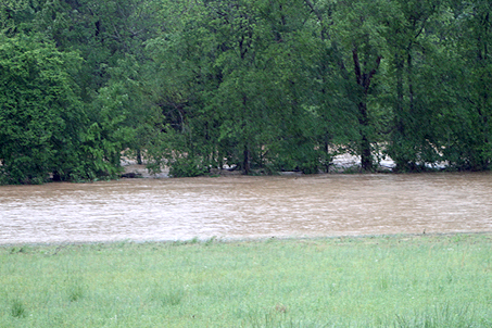 Across from our own house a river rages where there is normally just a trickling creek