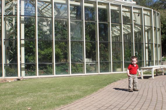 Calvin Explores the Gardens Outside the Butterfly Exhibit