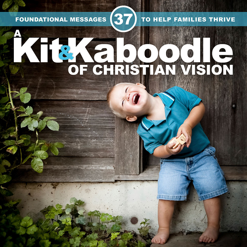 a-kit-and-kaboodle-of-christian-vision