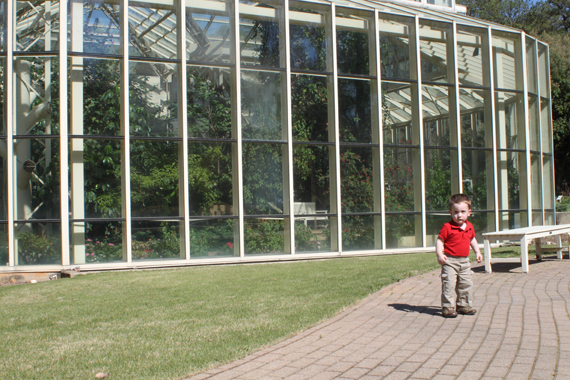 Calvin Explores the Gardens Outside the Butterfly Exhibit